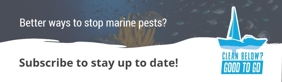 Better ways to stop marine pests